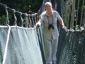 Private Tour: Kuala Lumpur Rainforest and Canopy Walkway Tour Photos