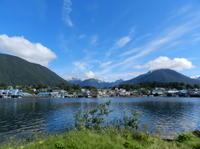Sitka Shore Excursion: Alaskan Wildlife by Land and Sea