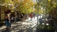 Small Bars of Perth Walking Tour Photos