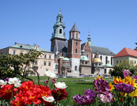 Small-Group Krakow Old Town Walking Tour Including Rynek Glówny, Mariacki and Wawel Cathedral Photos