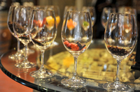 Small-Group Willamette Valley Wine-Tasting Tour from Portland Photos