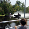 Small-Group Swamp Boat Tour of Cajun Country from New Orleans