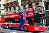 Sydney Shore Excursion: Sydney and Bondi Hop-On Hop-Off Tour Photos