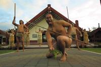 Tauranga Shore Excursion: Te Puia Maori Cultural Centre and Rotorua City Sightseeing Photos