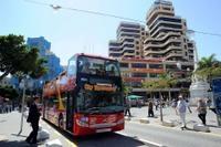 Tenerife Shore Excursion: Santa Cruz de Tenerife Hop-On Hop-Off Tour