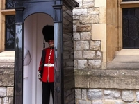 Thames River Cruise, Tower of London and City of London Tour