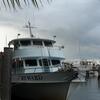 Miami Party Fishing Cruise