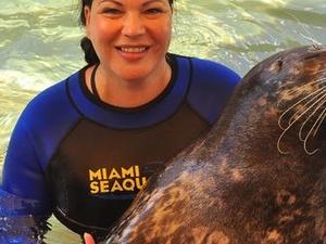 Swim with the Seals at the Miami Seaquarium Photos