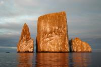 Tortuga Bay Tour and Yacht Cruise to La Loberia Island Photos