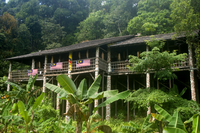 Traditional Bidayuh Village Bamboo Longhouse Tour from Kuching Photos