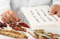 Traditional Chinese Medicine Lesson in Shanghai Photos