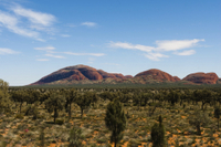 Uluru Sunset and Kata Tjuta Tour with Optional Outback Barbecue Dinner Photos