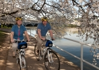 Viator Exclusive: Mt Vernon Trail and Washington DC Cherry Blossom Bike Tour from Alexandria Photos