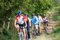 Vienna Woods Mountain Bike Tour Photos