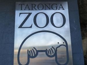 Sydney Harbour Cruise with Taronga Zoo Entry Ticket Photos